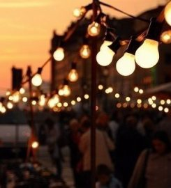 Festoon Lighting Shop